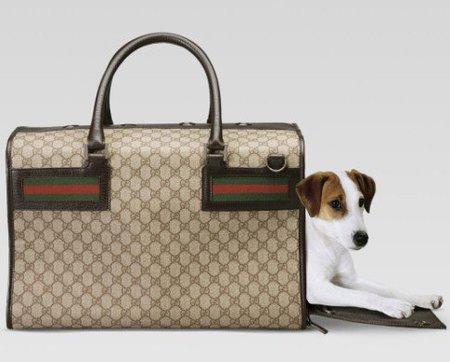 bolsa viaje perro