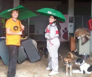 Muybuenaidea dona a Axla paraguas solidarios para fomentar la ayuda a los animales