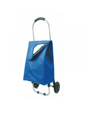 Carritos compra cooler de poliéster para personalizar imagen 1