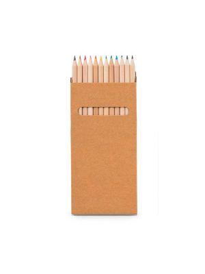Pinturas colorear croco de cartón imagen 2