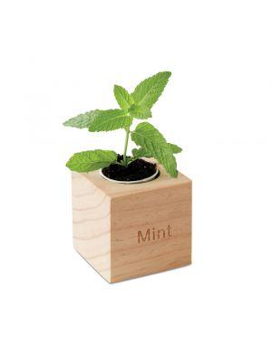 Jardinería menta maceta con semillas de menta de varios materiales con impresión imagen 2