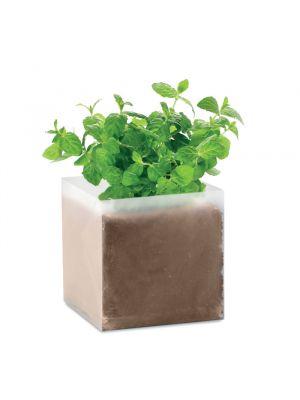 Jardinería mint bolsa semillas de menta de varios materiales imagen 2