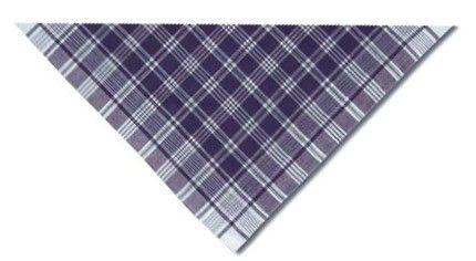 Hierbas & falleros hierbas triangular de cuadros azul de 100% algodón con logo vista 1